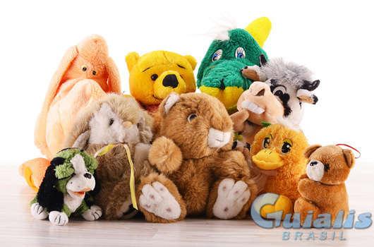 Brinquedos em Campo Mourão