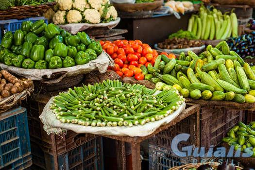 Verduras em Alagoas (Estado)